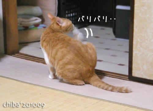 chiba10-09-96.jpg