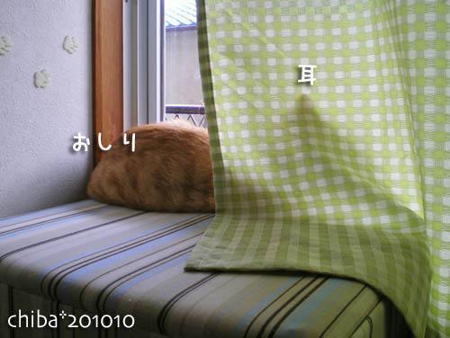 chiba10-10-124.jpg