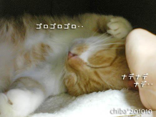 chiba10-10-57.jpg