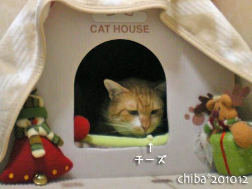 chiba10-12-49.jpg