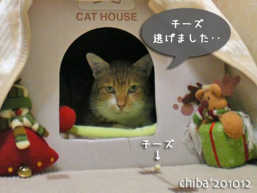 chiba10-12-50.jpg