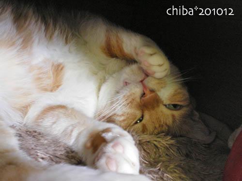 chiba10-12-97.jpg