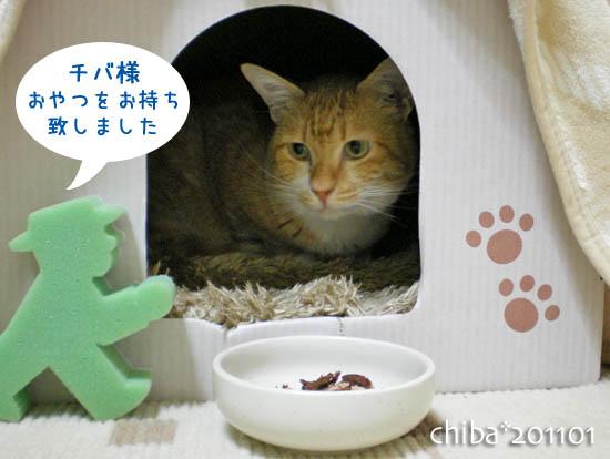 chiba11-1-156.jpg