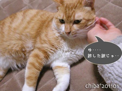 chiba11-1-34.jpg