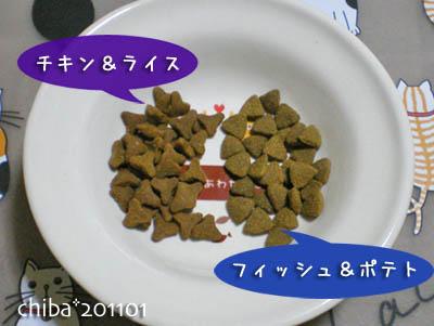chiba11-1-53.jpg