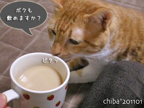 chiba11-1-65.jpg