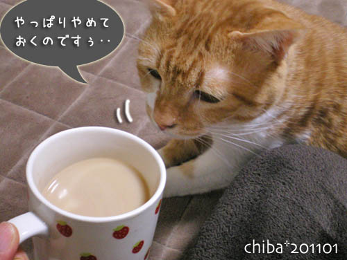 chiba11-1-66.jpg