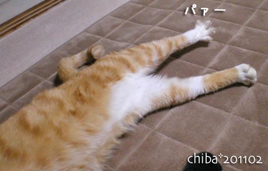 chiba11-2-112.jpg