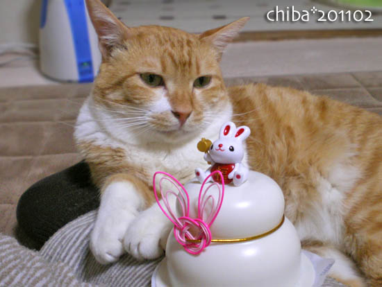 chiba11-2-65.jpg
