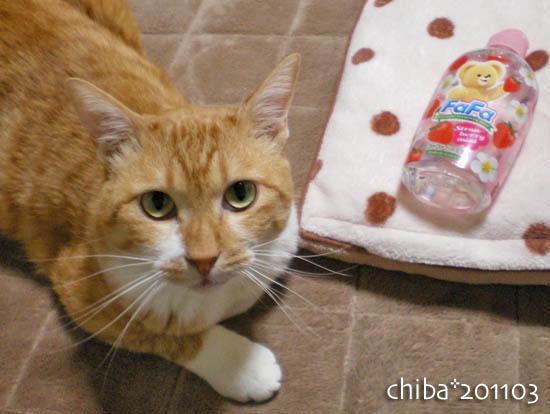chiba11-3-105.jpg