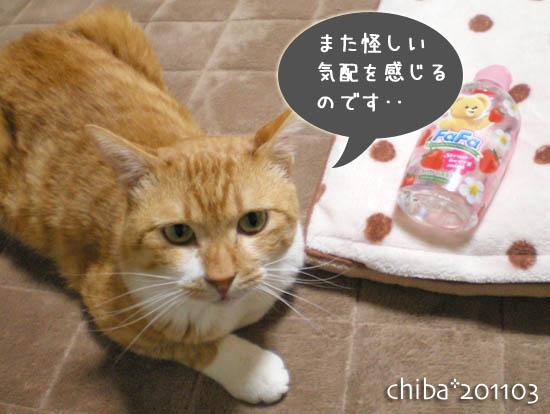 chiba11-3-106.jpg