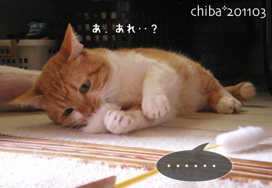 chiba11-3-142.jpg