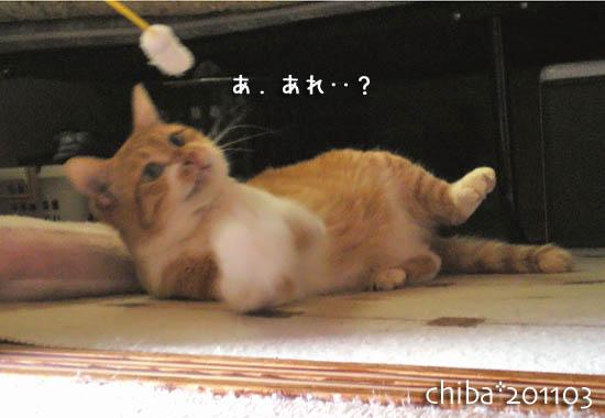 chiba11-3-146.jpg