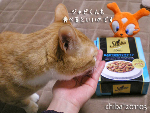 chiba11-3-51.jpg