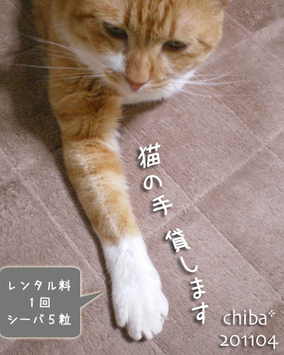 chiba11-4-103.jpg