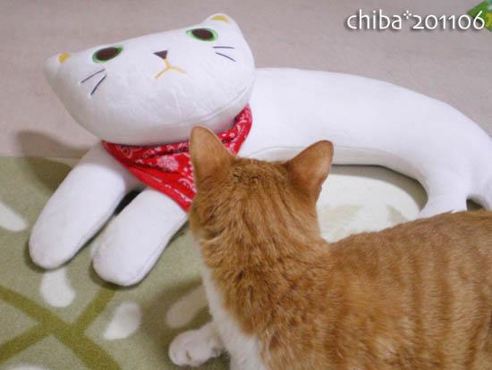 chiba11-6-197.jpg