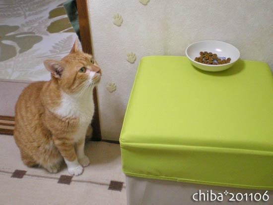 chiba11-6-56.jpg