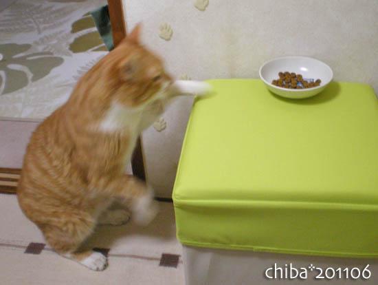chiba11-6-58.jpg