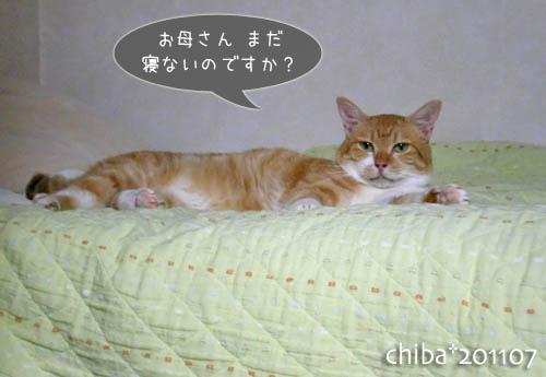 chiba11-7-58.jpg