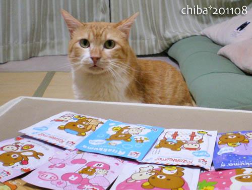 chiba11-8-53.jpg