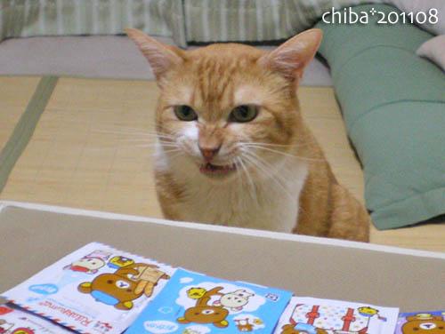 chiba11-8-58.jpg