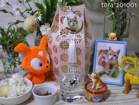 tora10-01-105.jpg