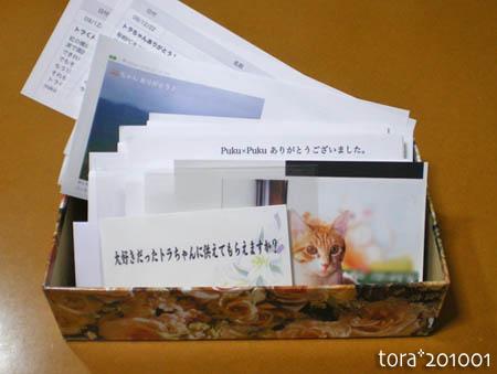 tora10-01-114.jpg