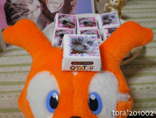 tora10-02-116s.jpg