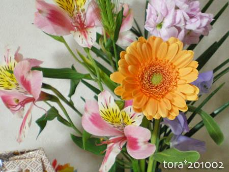 tora10-02-143.jpg