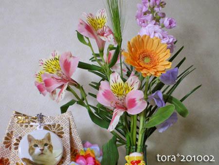 tora10-02-144.jpg