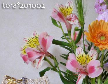 tora10-03-06.jpg