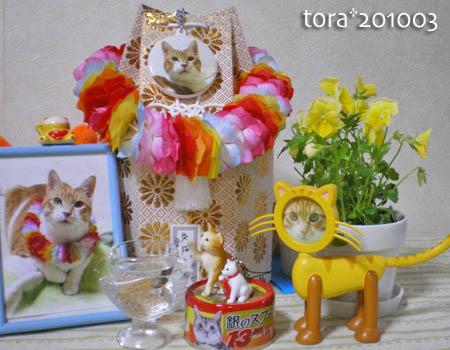 tora10-03-93.jpg