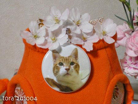 tora10-04-39.jpg