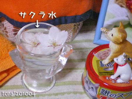 tora10-04-42.jpg