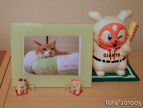 tora10-05-f6.jpg