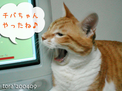 tora10-09-01.jpg
