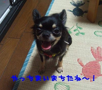 DSCF5146-1.jpg