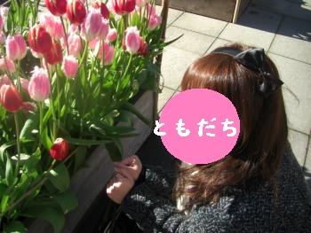 4_20100116193530.jpg