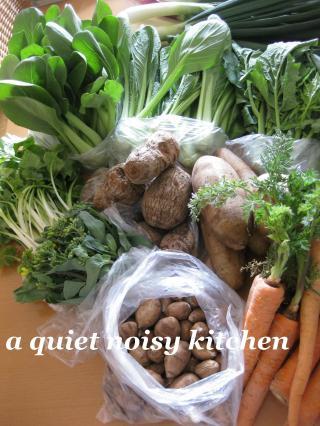 春の野菜その3