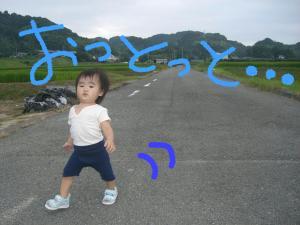 09013_convert_20080901221235.jpg