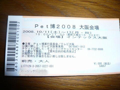 P1070343.jpg