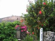 美女クヤマの生家
