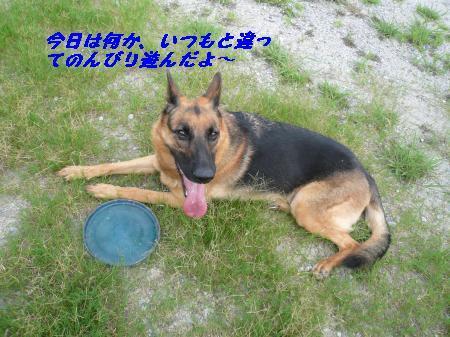 rai+575_convert_20090816155255.jpg