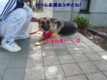 raiari+342_convert_20090712234135_20090713000415.jpg