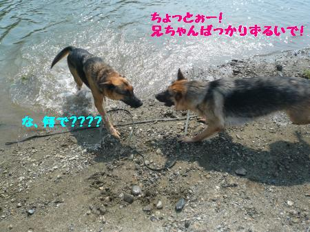 raiari+464_convert_20090805085049.jpg