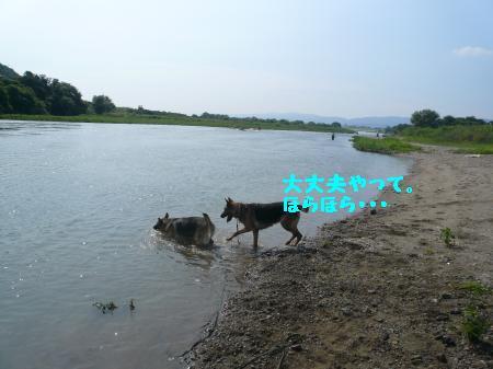 raiari+468_convert_20090805085440.jpg