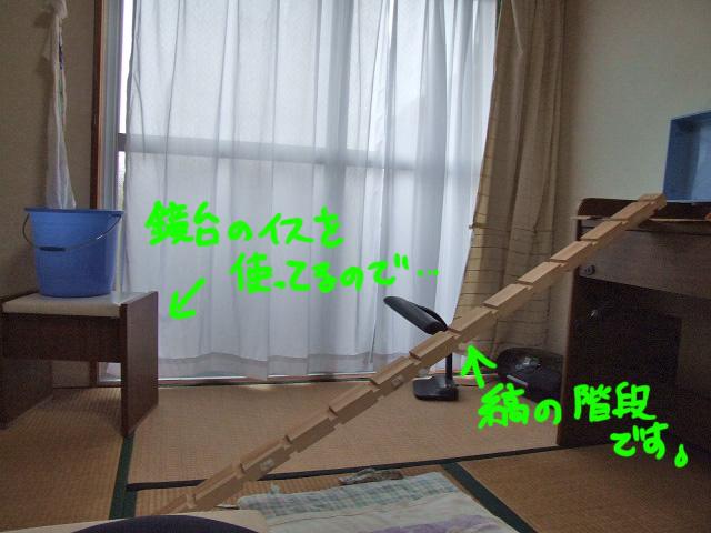 DSCF17223.jpg