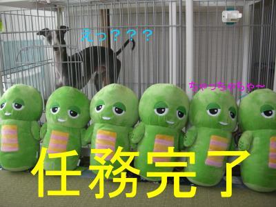 12_convert_20090616145029.jpg