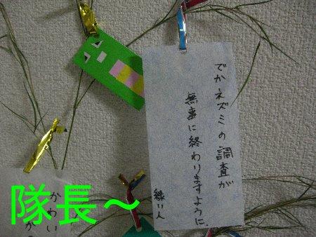七夕 緑ぃ人