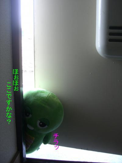 2_convert_20090616144352.jpg